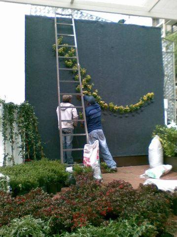 construcci n de muro verde molier dise o de jardines